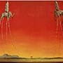 Salvador Dali - Les Elephants -