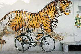 Bicycle at wall painting of tiger , Udaipur, Rajasthan, India (photo)
