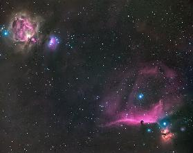 Orion Nebula and The Horsehead