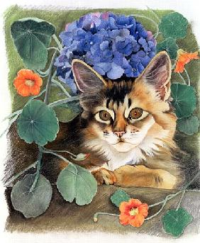 Sootsy with Hydrangea (pastel on paper)
