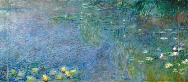 Waterlilies: Morning