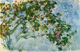 De rozen - Claude Monet