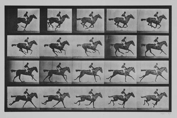 "Jockey on a galloping horse, plate 627 from ""Animal Locomotion"""