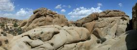 Wonderland of Rocks - Joshua Tree NP