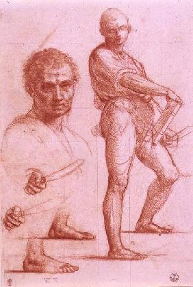 Study of a male holding a sword and a book, the sword and feet rehearsed twice, and a male head