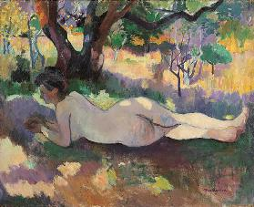 Nude under the Trees (Nu sous les arbres)