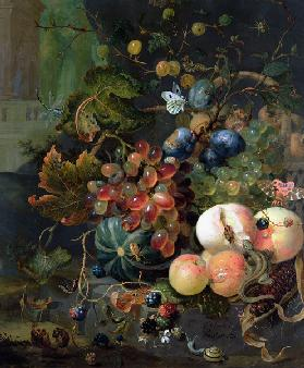 Still Life of Fruit and Insects
