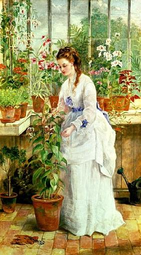 Young Lady in a Conservatory