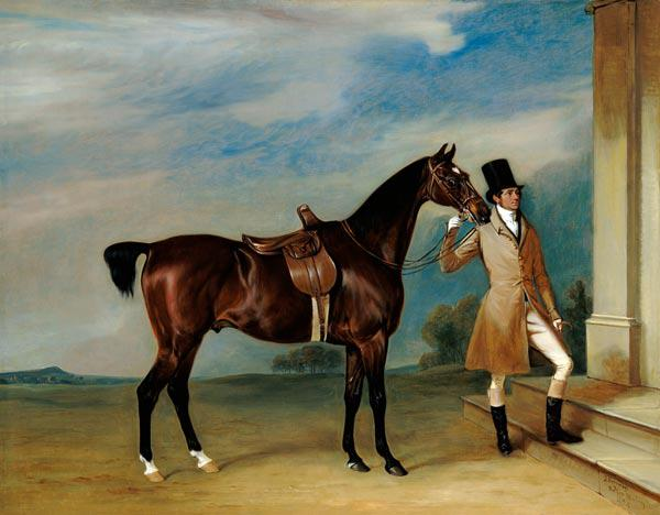 Miss Villebois' Bay Hunter held by a Groom