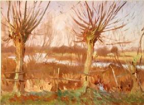 Landscape with Trees, Calcot-on-the-Thames