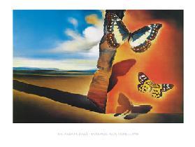 Salvador Dali Alle Kunstdrukken Schilderijen Van Kunstkopie Nl