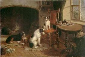 Interior with Dogs