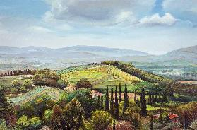 Rolling Hills, Pistoia, Tuscany (oil on canvas)