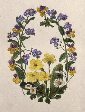 Primroses, Forget-me-nots, Pansies and Daisies (w/c on paper)