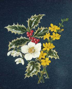 Holly, Christmas Rose, Snowdrop and Winter Jasmine (w/c on paper)