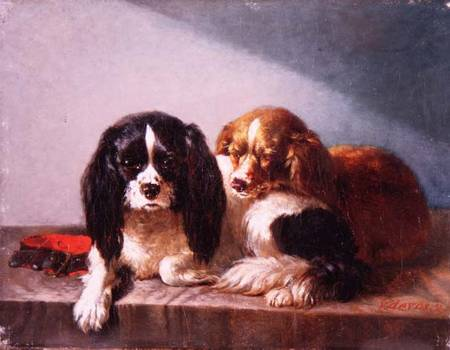 Afbeelding vincent de vos a pair of cavalier king charles spaniels