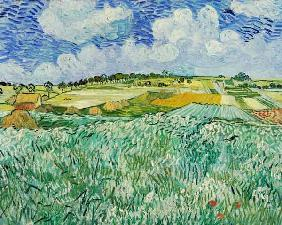 The Plain at Auvers